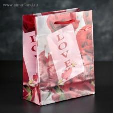 Пакет LOVE 18х23х8,5 см  3821358