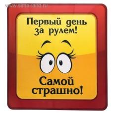 """Автомобильная наклейка """"ПЕРВЫЙ ДЕНЬ ЗА РУЛЕМ"""" 608642"""